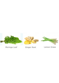 Moringa Ginger Loose Tea Leaves