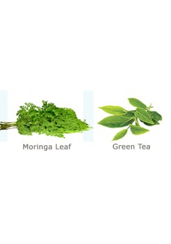 Moringa Green Loose Tea Leaves