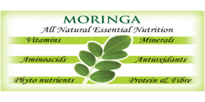 Moringa Health Benefits - Facts You Did Not Know Yet!